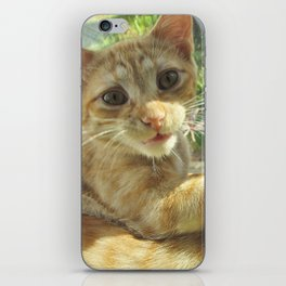 Busted... iPhone Skin