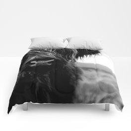 Scottish Highland Cattle Baby - Black and White Animal Photography Comforters