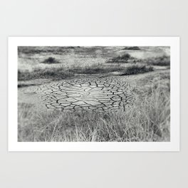 Arid Art Print