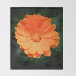 Captivating Calendula Throw Blanket