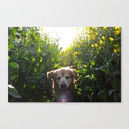 Rex The Dog Canvas Print