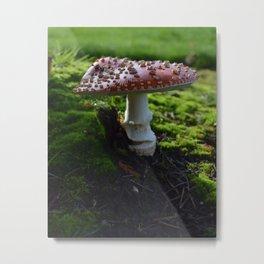 Fly Agaric/Amanita Muscaria Mushroom  Metal Print