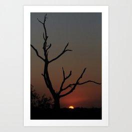 Tree in the solitude Art Print
