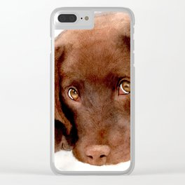 Chocolate Lab Puppy Clear iPhone Case