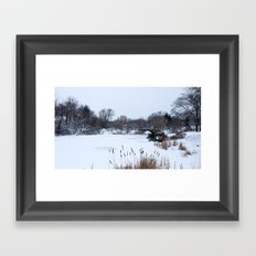 Snow in Central Park VIII Framed Art Print