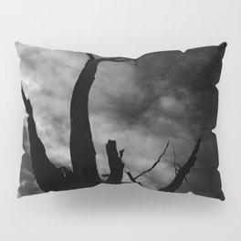 Outback tree Pillow Sham