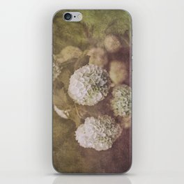 Snowballs iPhone Skin