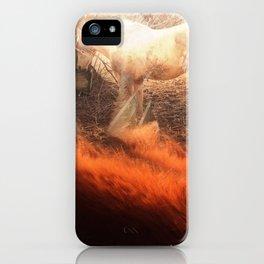 Seasons iPhone Case