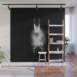 Horse in the dark Wall Mural