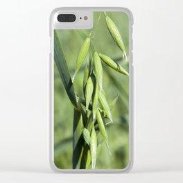 ear of oat Clear iPhone Case