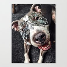 Hiding behind a Mask Canvas Print