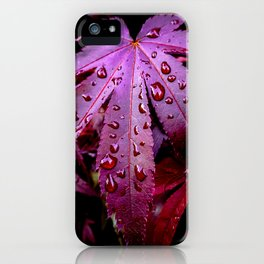 Lingering Rain iPhone Case