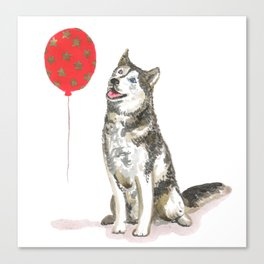 Husky With Balloon Canvas Print