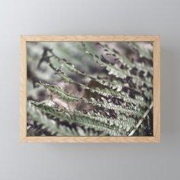 Fern 18 Framed Mini Art Print