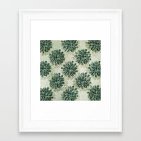 succulents Framed Art Prints featuring Succulents by Sandra Arduini
