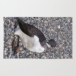 Razorbill Walking on the Beach Rug