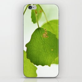 Aspen leaves iPhone Skin