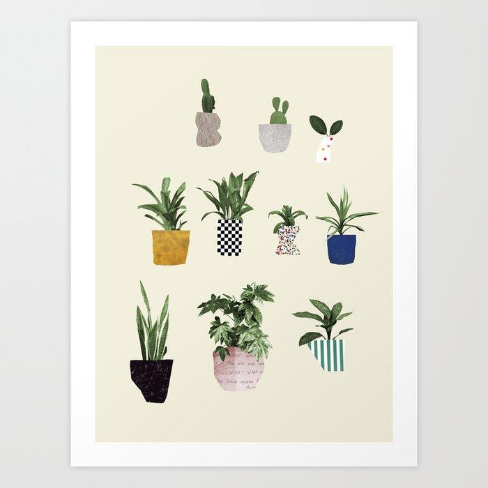 HOUSE PLANTS Kunstdrucke