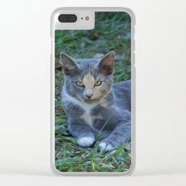 Cat Painting Clear iPhone Case