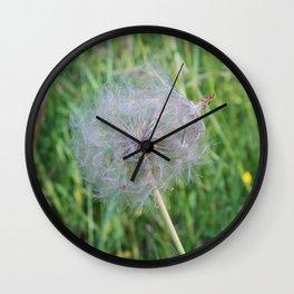 Jumbo Dandelion Close Up Wall Clock