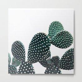 Pearl cactus Metal Print