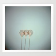 Triple Exposed Palm Trees Art Print