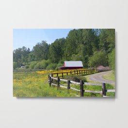 Red Barn in Yellow Wildflower Field Metal Print