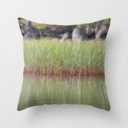Watercolor Landscape, Kejimkujik 15, Nova Scotia, Canada Throw Pillow