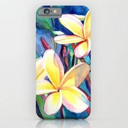 Sweet Plumeria 4 iPhone Case