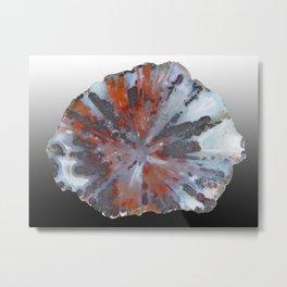 Cady Mountain Aragonite Pseudomorph (Sagenite) Metal Print