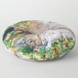 Playful Lynx Floor Pillow