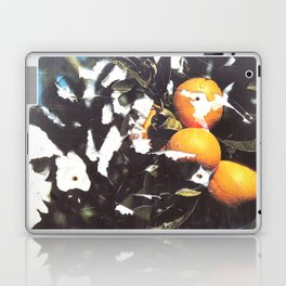 Just Oranges Laptop & iPad Skin