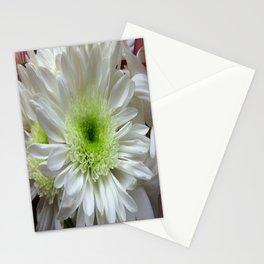 Daisy Reflection Stationery Cards