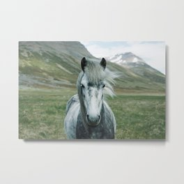 Mare of the Fields Metal Print
