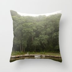The Dingy Throw Pillow