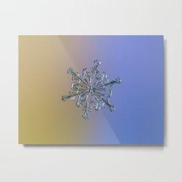 Snowflake Macro Photo - 13 February 2017 - 2 alt Metal Print