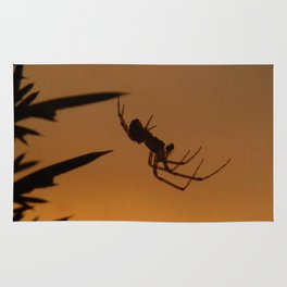 Sunset Spider Rug