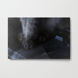 demurely yours Metal Print