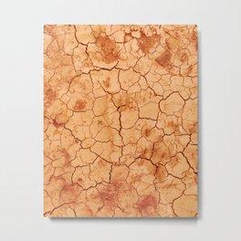 Desert lover - Rodalquilar Metal Print