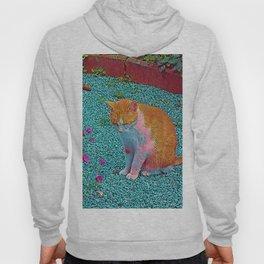 Popular Animals - Cat Hoody