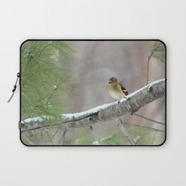 A Cold Winter Day (American Goldfinch) Laptop Sleeve