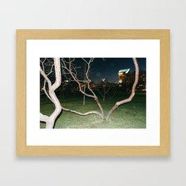 Existentiallis V Framed Art Print