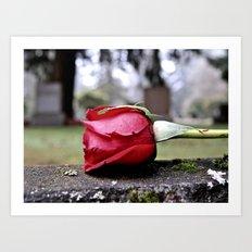 Red cemetery rose Art Print