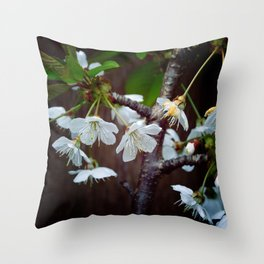 The beauty of Cherry flowers Throw Pillow