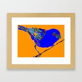 Madagascar Fody - Blue/Neon Orange Pop Art Framed Art Print