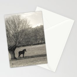 The horse and the tree Stationery Cards