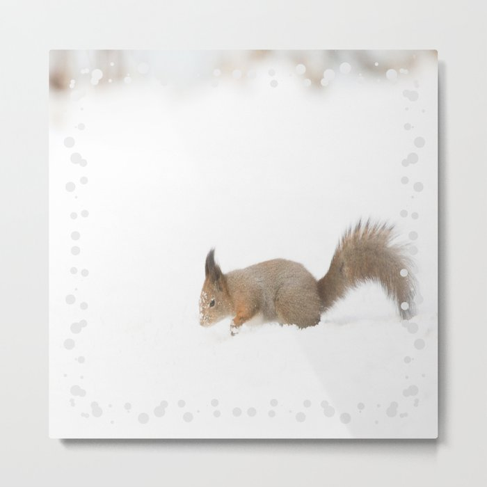 Little squirrel sitting in the snow #decor #society6 #buyart Metal Print