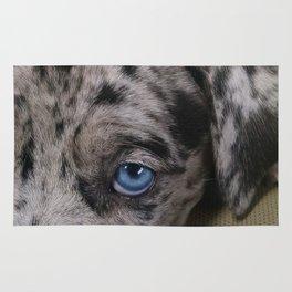 My Dixie Blue Rug