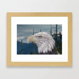Bald Eagle in the Mountains Framed Art Print
