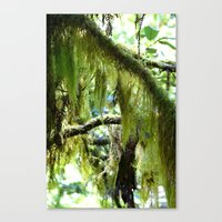 moss Canvas Prints featuring Moss by T & K Arts